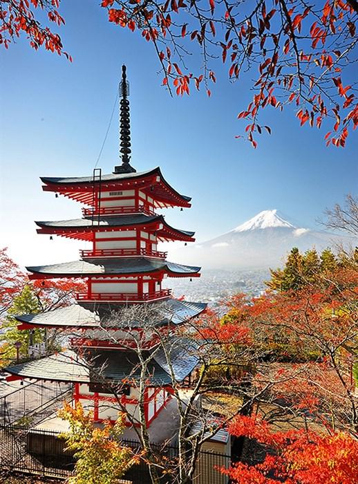 Фотообои DIVINO DECOR A-076 Япония 200x270см - фото 10842