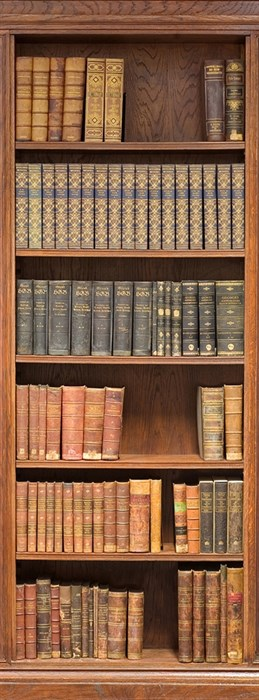 Фотообои DIVINO DECOR A-067 Книжный шкаф 100х270см - фото 11188