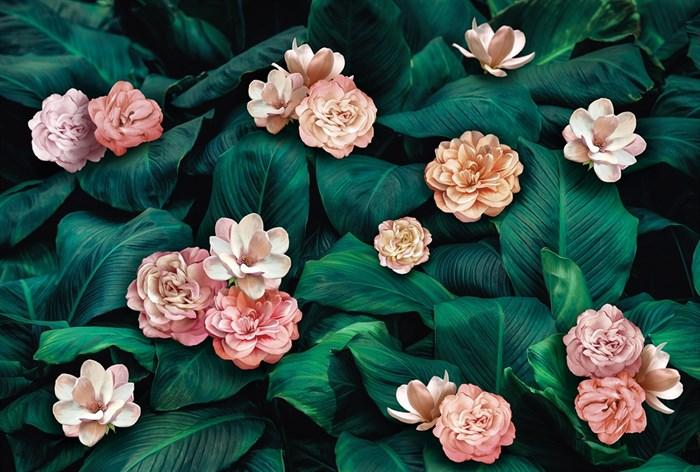 Фотообои DIVINO DECOR T-275 Цветы на зеленых листьях 400х270см - фото 13814