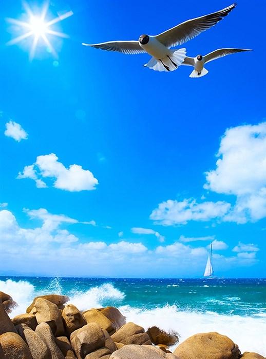 Фотообои DIVINO DECOR B-078 Чайки 200х270см - фото 15868