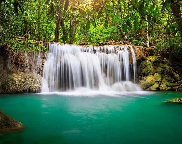 Фотообои DIVINO DECOR C-017 Лесной водопад 300х238см - фото 18002