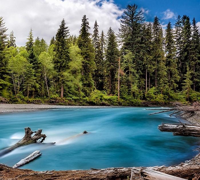 Фотообои DIVINO DECOR C-022 Лесное озеро 300х270см - фото 18240