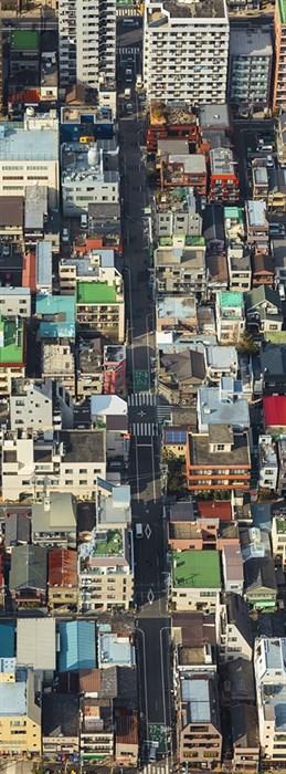 Фотообои DIVINO DECOR C-264 Вид на Токио 100х270см - фото 19190