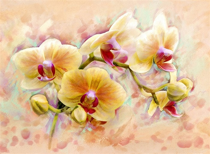 Фотообои DIVINO DECOR C-300 Орхидея живопись 200х147см - фото 19837