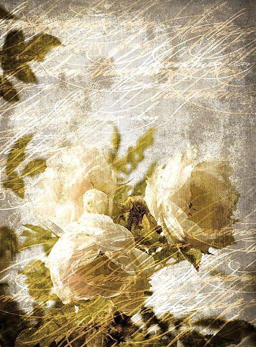 Фотообои DIVINO DECOR D-082 Розы винтаж 200х270см - фото 20008