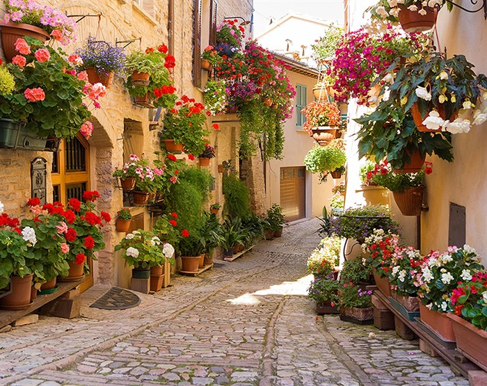Фотообои DIVINO DECOR C-363 Италия в цветах 300х238см - фото 20697