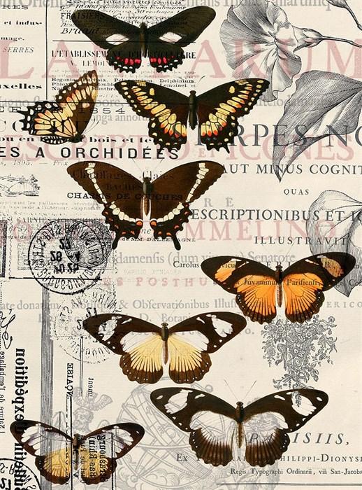 Фотообои DIVINO DECOR E-044 Бабочки 200х270см - фото 21046