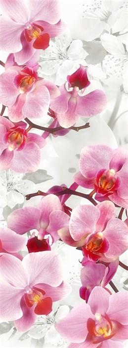 Фотообои DIVINO DECOR H-040 Орхидеи 100х270см - фото 22057
