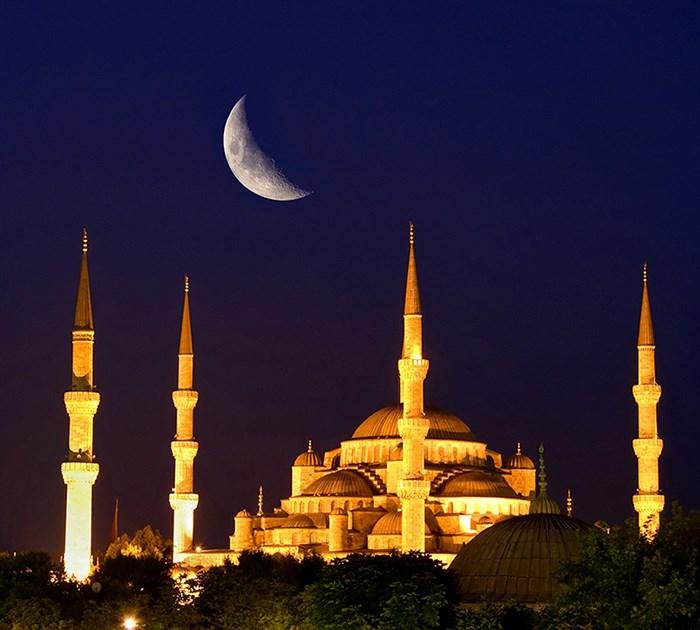 Фотообои DIVINO DECOR C-168 Голубая мечеть под луной 300х270см - фото 23160