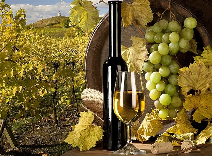 Фотообои DIVINO DECOR C-305  Вино 200х147см - фото 23358