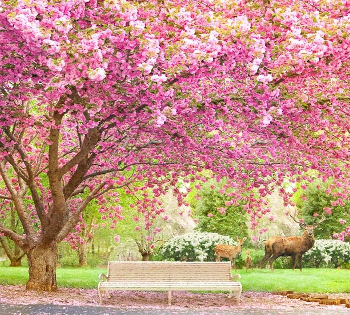 Фотообои DIVINO DECOR L-032 Вишня в саду 300х270см - фото 23849