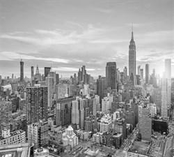 Фотообои DIVINO DECOR T-167 Нью-Йорк Сити 300х270см