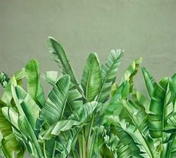 Фотообои DIVINO DECOR T-288 Банановые листья 300х270см