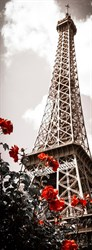 Фотообои DIVINO DECOR A-085 Весна в Париже 100х270см