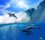 Фотообои DIVINO DECOR B-066 Дельфины в волнах 300х270см - фото 15880