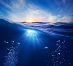 Фотообои DIVINO DECOR B-072 Линия воды 300х270см - фото 16252