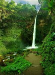 Фотообои DIVINO DECOR C-018 Тропический водопад 200х270см - фото 17959