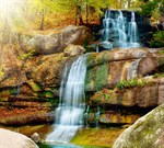 Фотообои DIVINO DECOR C-091 Водопад в парке 300х270см - фото 18048