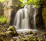 Фотообои DIVINO DECOR C-092 Водопад в реликтовом лесу 300х270см - фото 18057