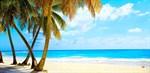 Фотообои DIVINO DECOR C-007 Тропический пляж 300х147см - фото 18437