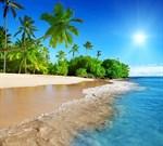 Фотообои DIVINO DECOR C-002 Дикий пляж 300х270см - фото 18473