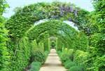 Фотообои DIVINO DECOR D-097 Зеленые арки 400х270см - фото 18799