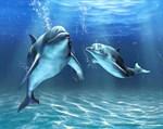 Фотообои DIVINO DECOR D-064 Два дельфина  300х238см - фото 18953