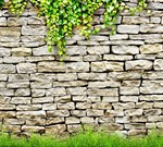 Фотообои DIVINO DECOR D-038 Каменная стена 300х270см - фото 19720