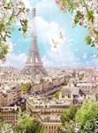 Фотообои DIVINO DECOR H-003 Голуби над Парижем 200х270см - фото 21563
