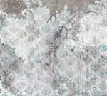 Фотообои DIVINO DECOR T-249 Узоры на разбитой стене 300х270см - фото 24144